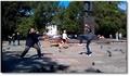 Un combat avec des pigeons comme shuriken !