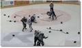Bagarre générale au hockey !