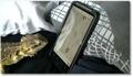 Un lézard joue à un jeu sur Smartphone !