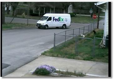 Un livreur FedEx oublie son frein à main