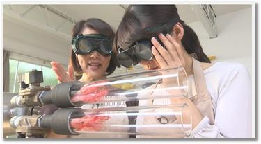 Pub insolite avec des crevettes au Japon