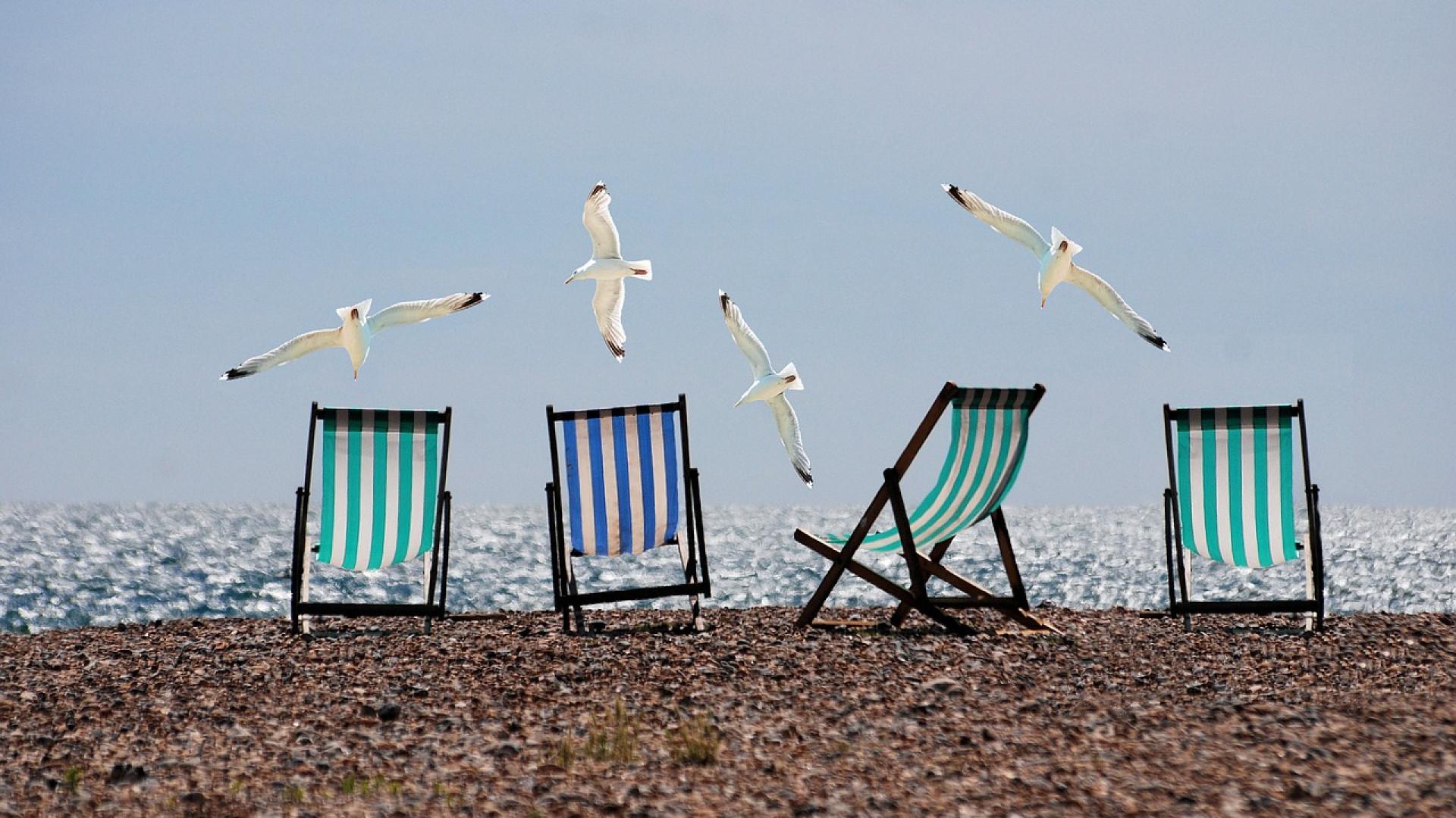 Quel type d'hébergement pour vos prochaines vacances ?